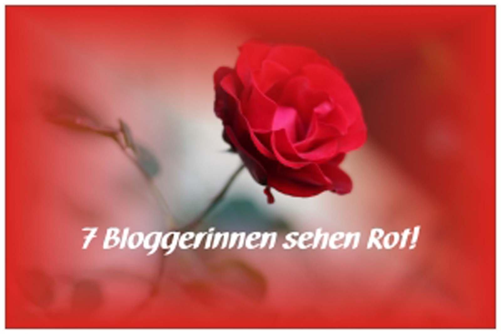 Bloggerinnen-sehen-Rot