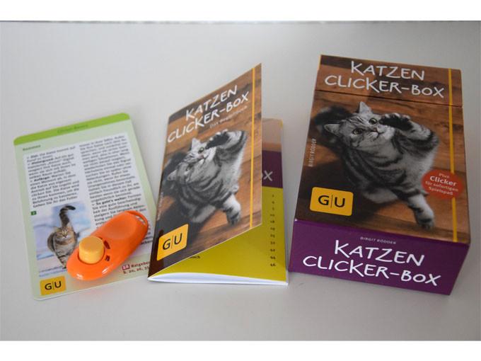 sabine-gimm-klickertraining-katze-02